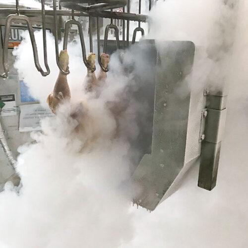 sbimpianti-tunnel-raffreddamento-impianti-macellazione-4